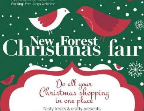 The New Forest Christmas Fair 2017